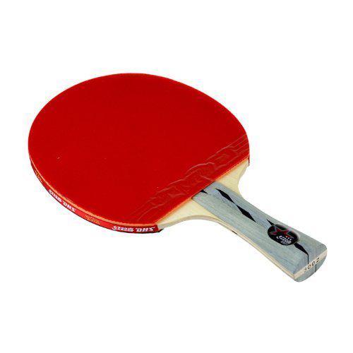 Pálka na stolní tenis DHS X3002 AKCE SLEVA
